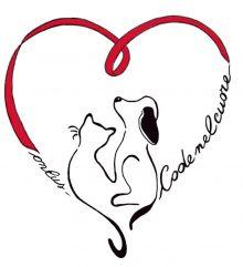 Logo code nel cuore
