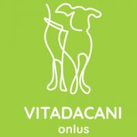 vdc logo